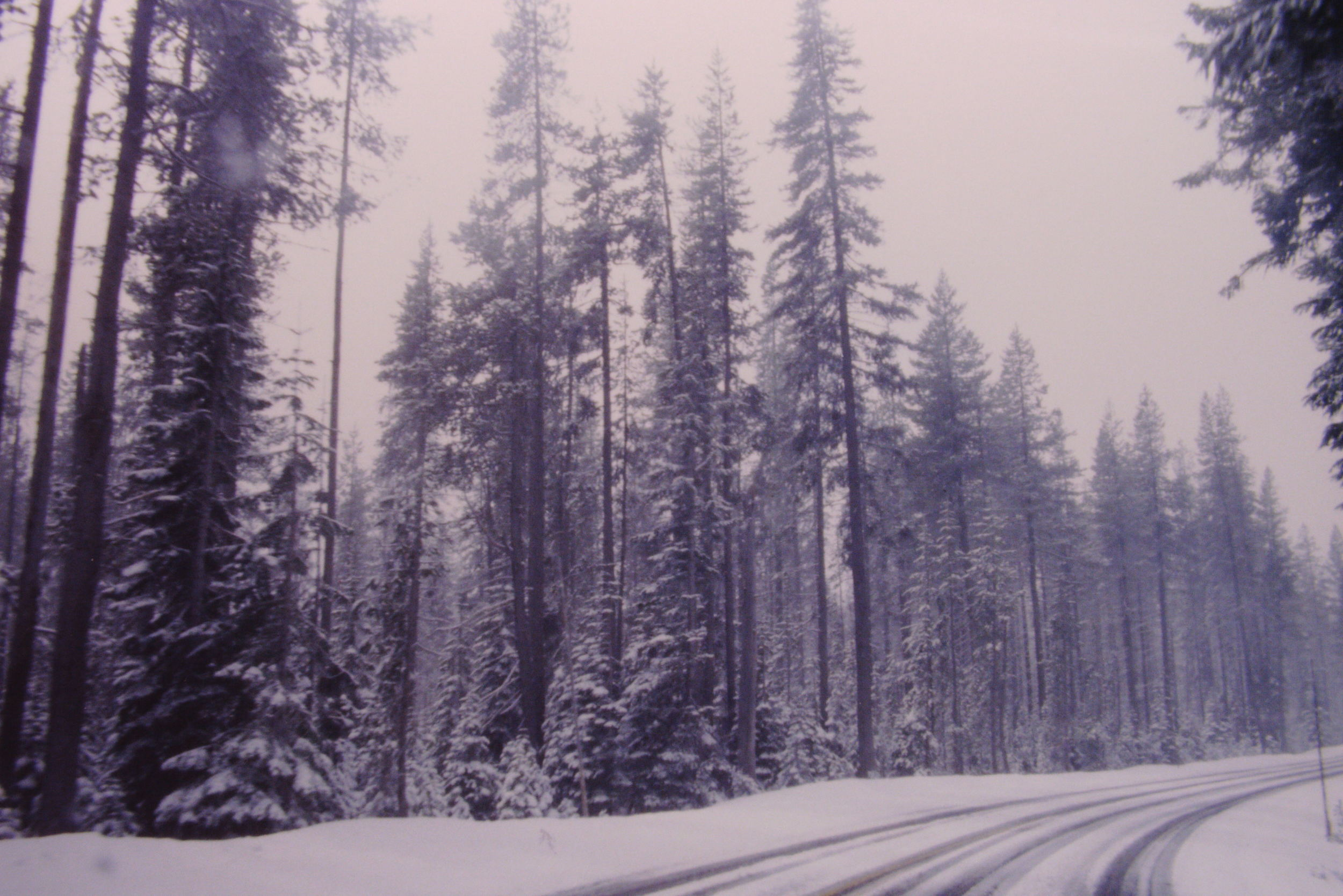KodakEktachromeSlide(Portland--SanDiego)66.JPG