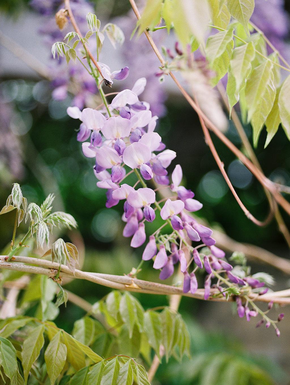 BotanicalGarden-49.jpg