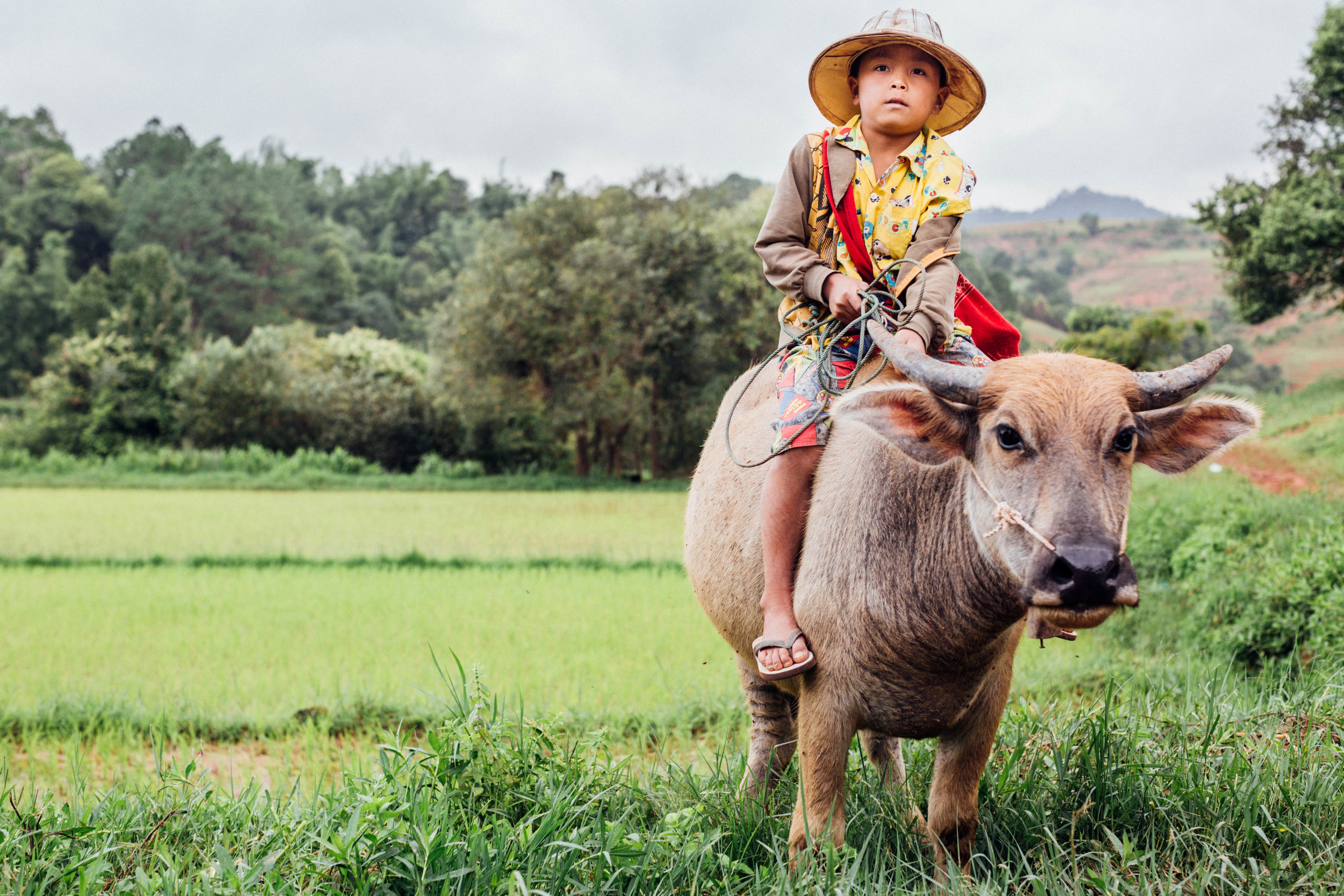 Burmese boy and his friend