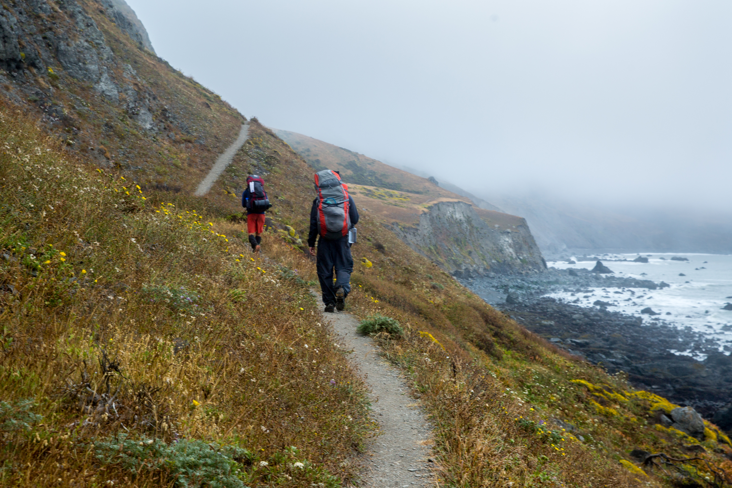 CR0A9013_CALIFORNIA_LOSTCOAST_HIKING_ROB.jpg