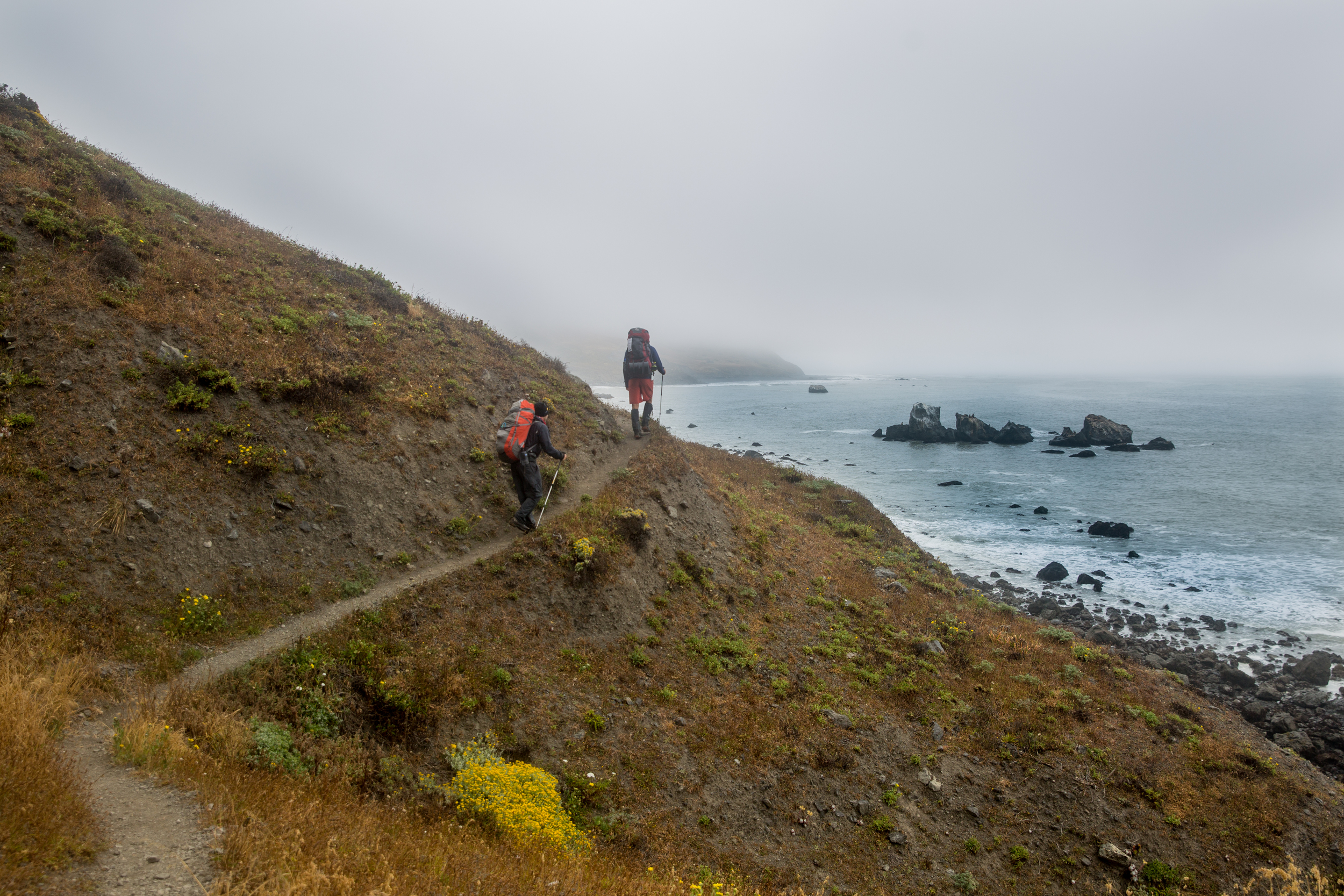 CR0A9038_CALIFORNIA_LOSTCOAST_HIKING_BRAD_ROB.jpg