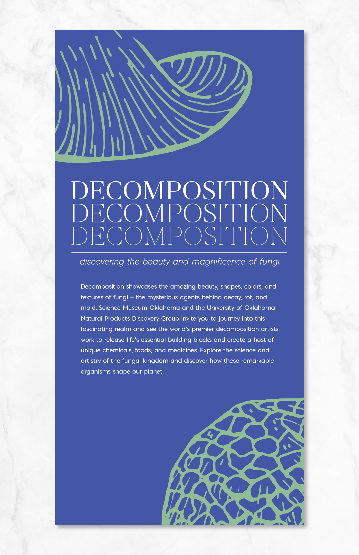 Erin DeMoss - Decomposition - Science Museum Oklahoma Exhibit Signage