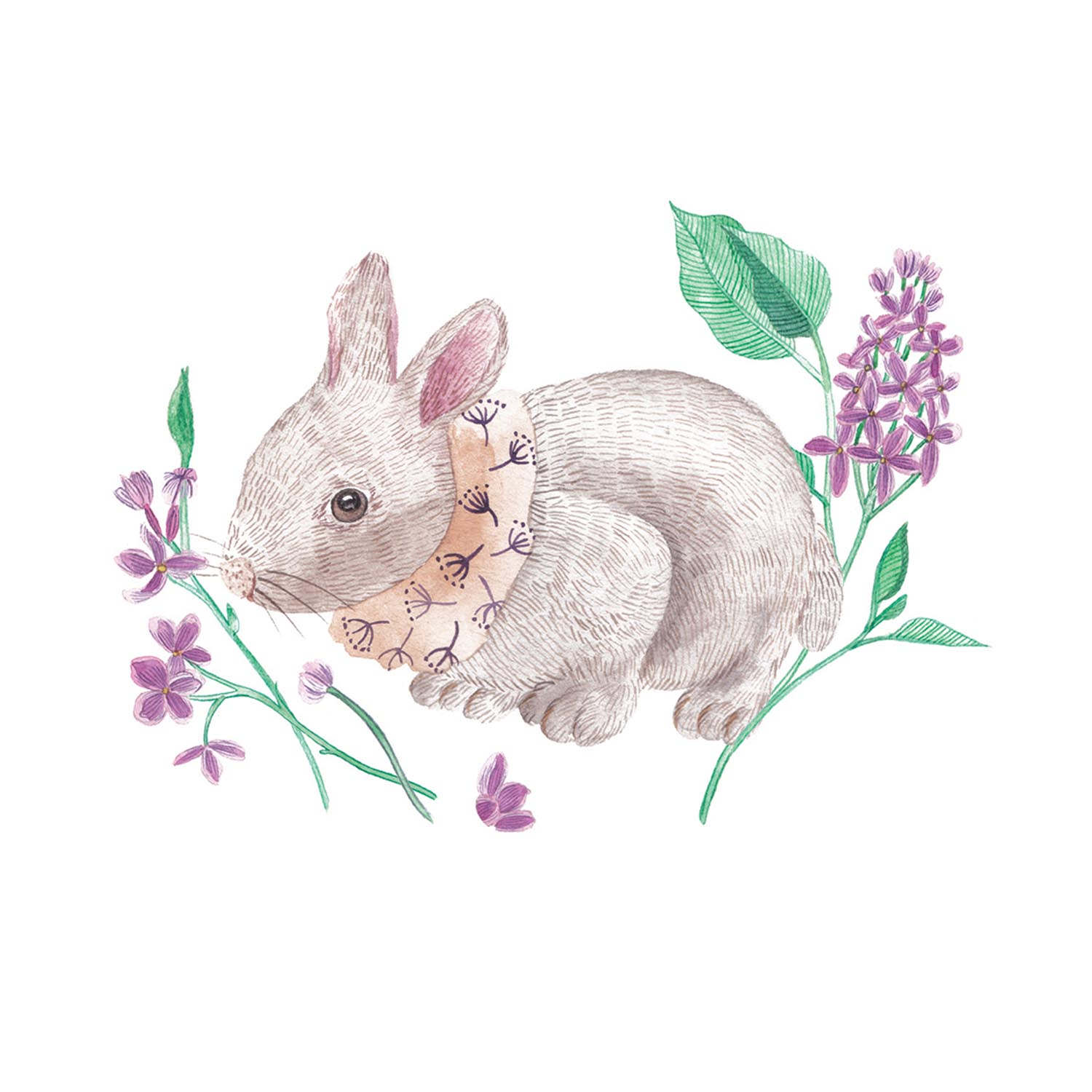 Bunny & Common lilac V.jpg