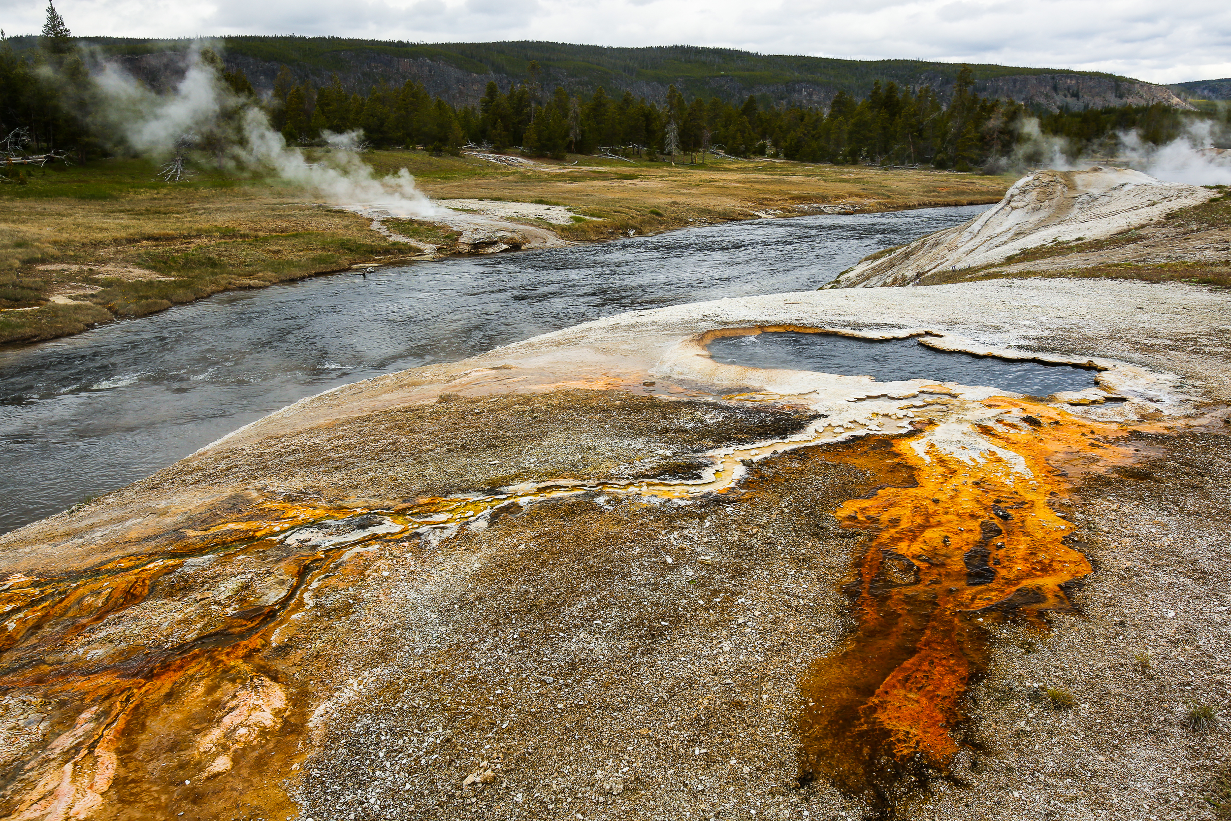 South Scalloped Spring, on the east bank of the Firehole River