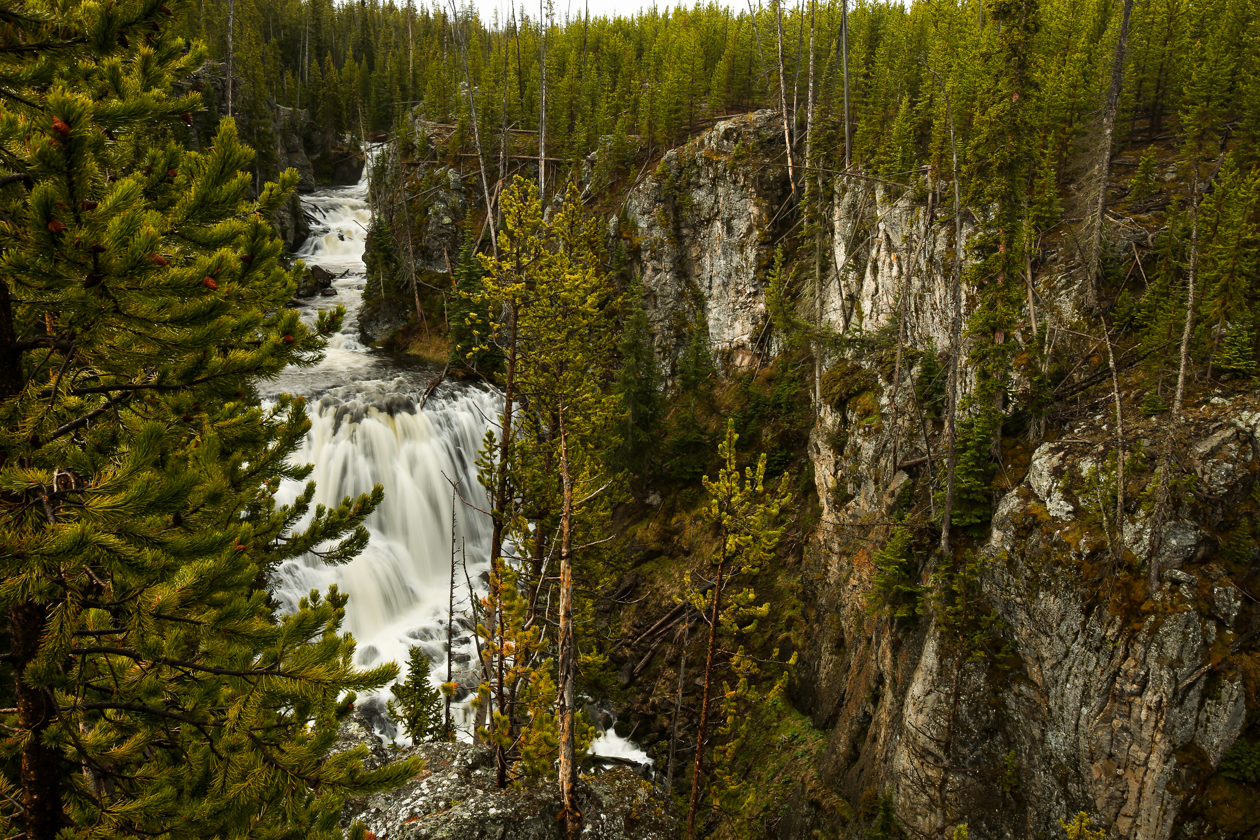 Kepler Cascades, Yellowstone National Park.  Shot with a wide angle lens on my Canon 5D, ISO 100, f/16, long shutter speed of 0.3 seconds. I also used a circular polarizer to cut the light and allow for a longer shutter speed. This was taken at about 6:30am, on a cloudy but dry morning, with the sun just peeping through the clouds to the left.