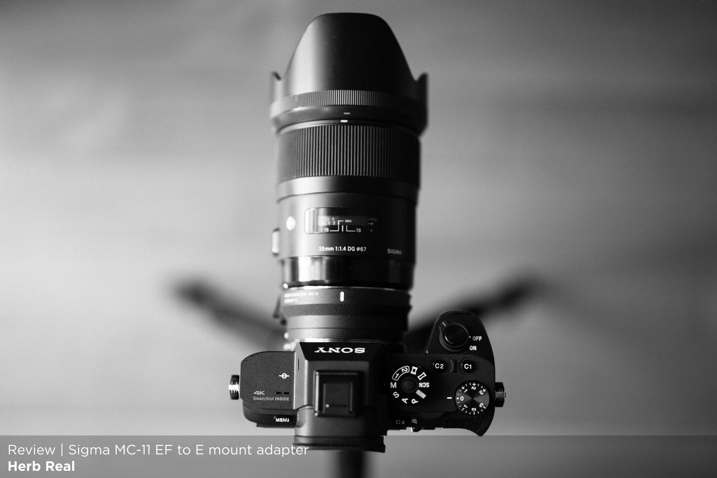 A7rii MC11-5405 T.jpg
