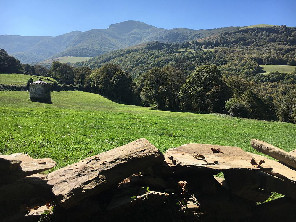 Camino2Oct1.jpg