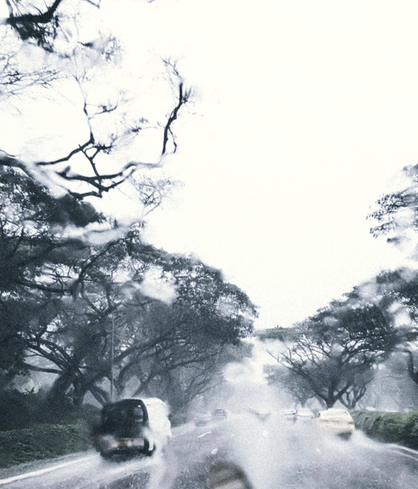 Art by rain