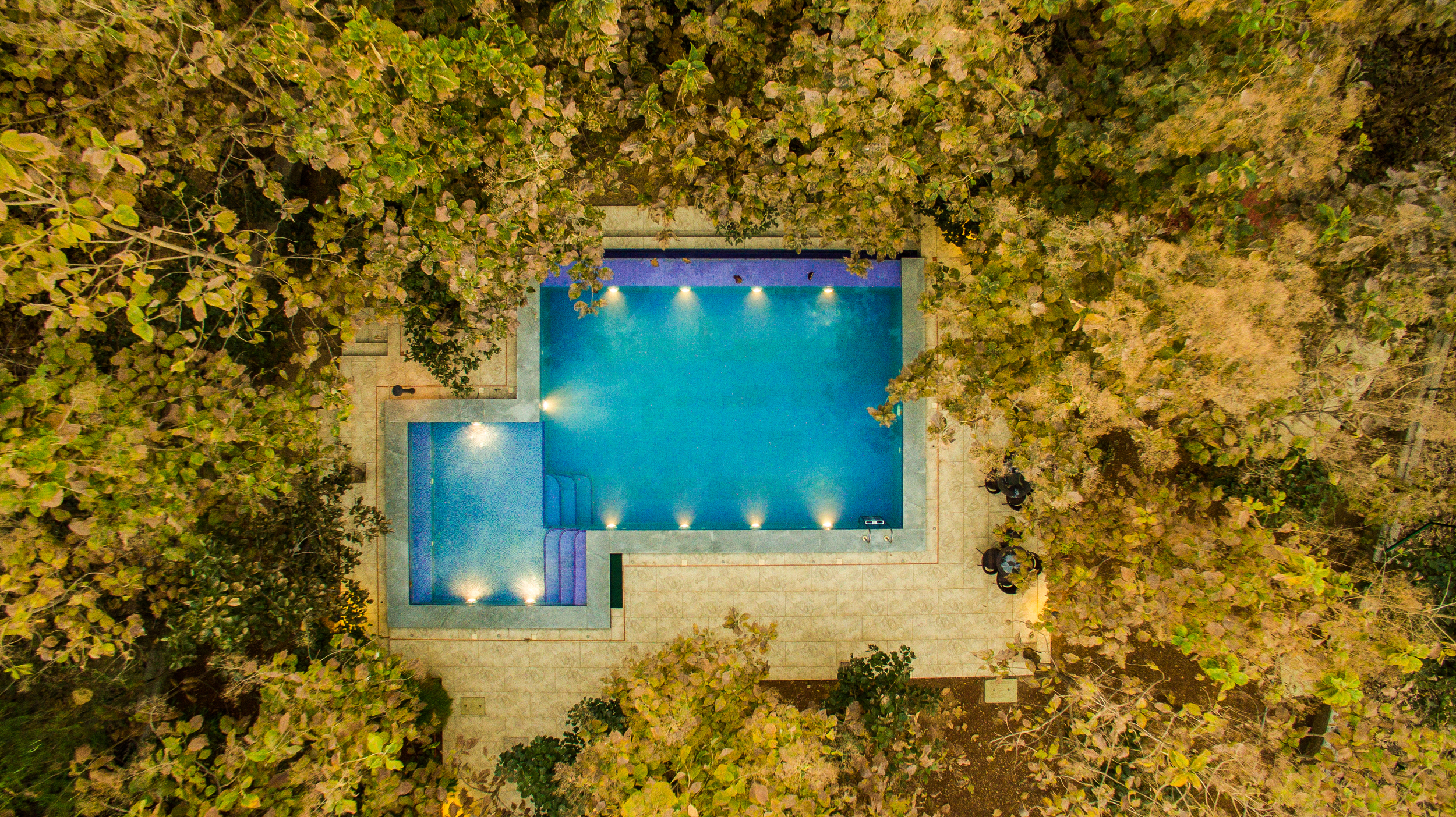 The pool, surrounded by the forest, with a secure fencing around the deck and the swimming area