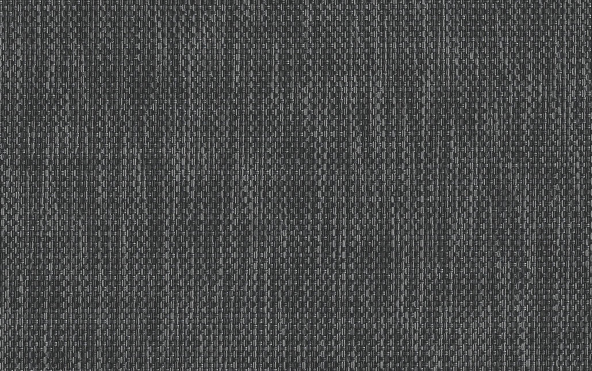 Grey Tabby - 1903