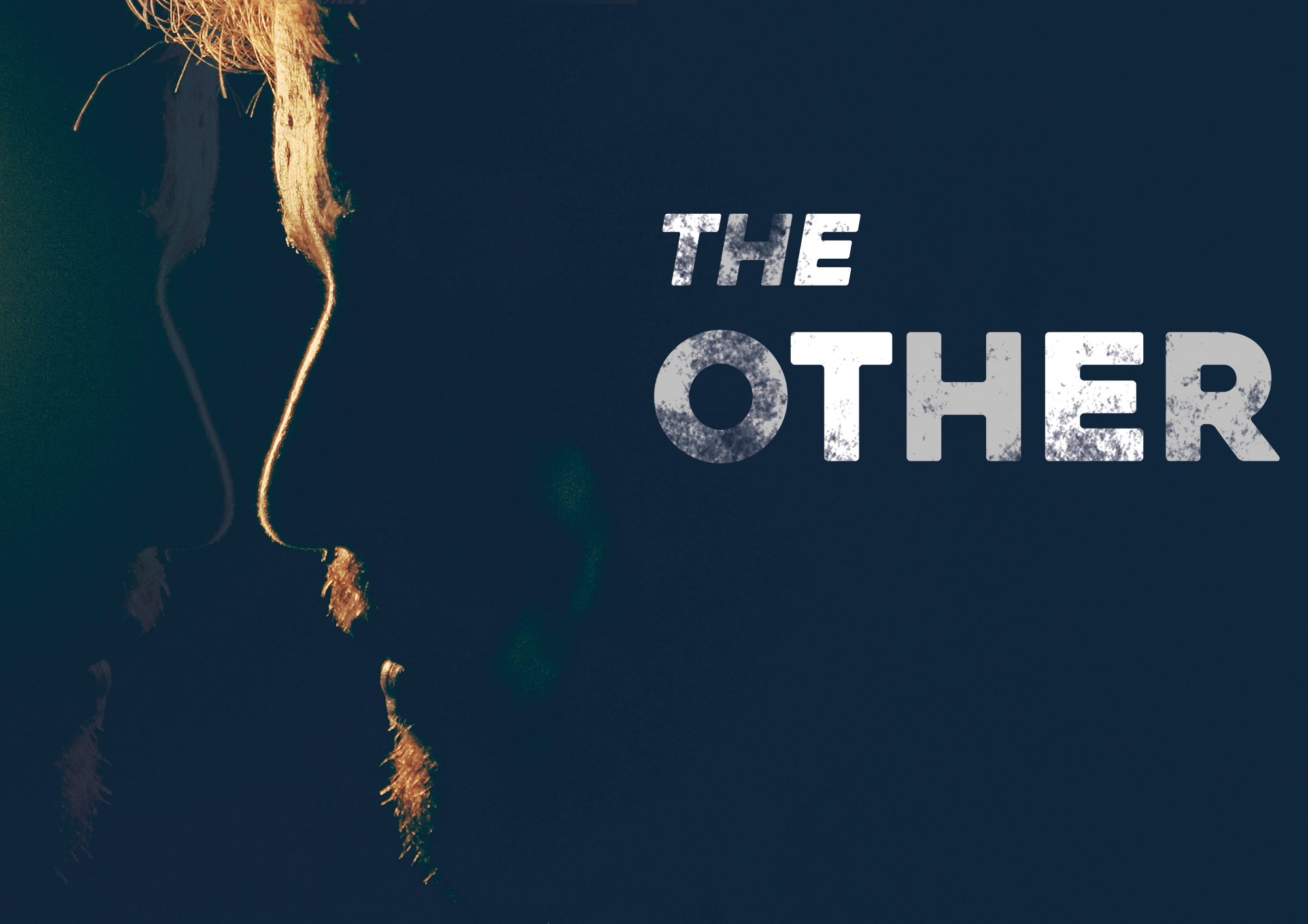 THEOTHER-poster-landscape2.png