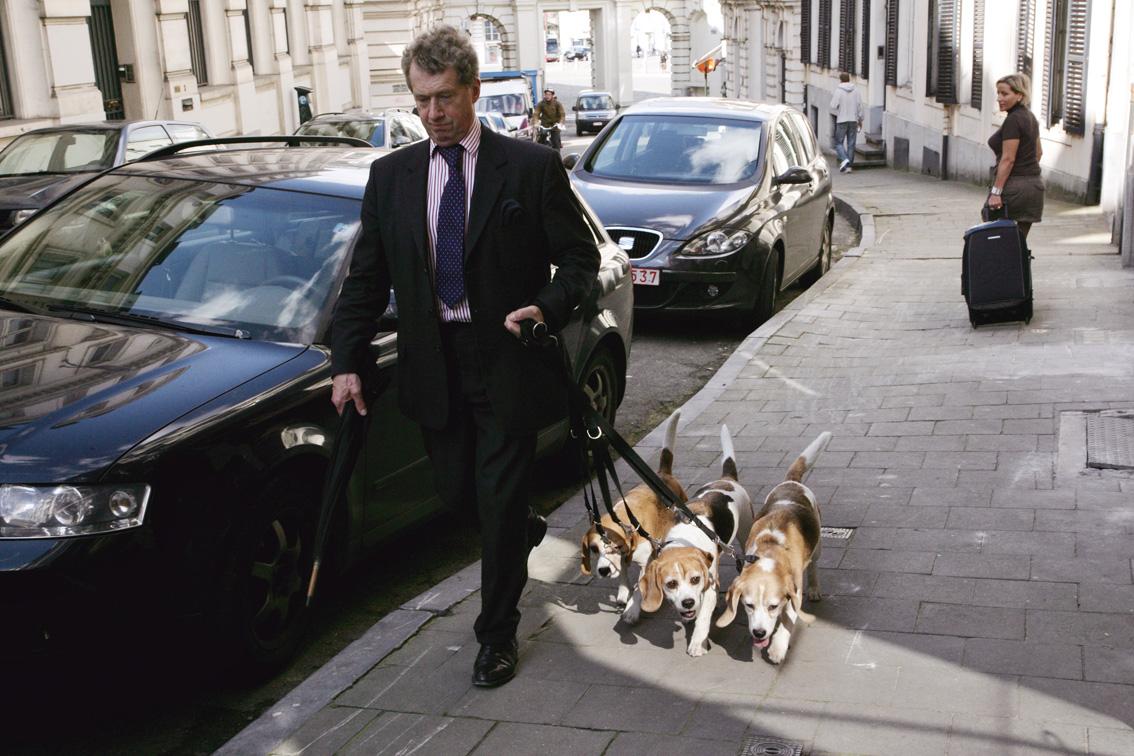 Dog Days_BXL©Jo-Voets.jpg