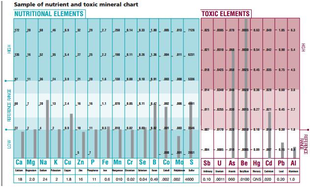 sample-HTMA-chart.jpg.png