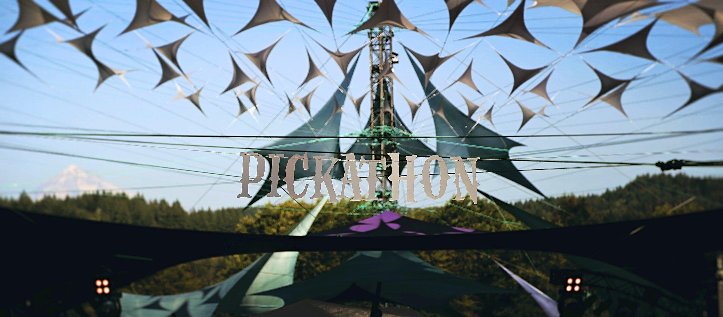 pickathon (3).jpg