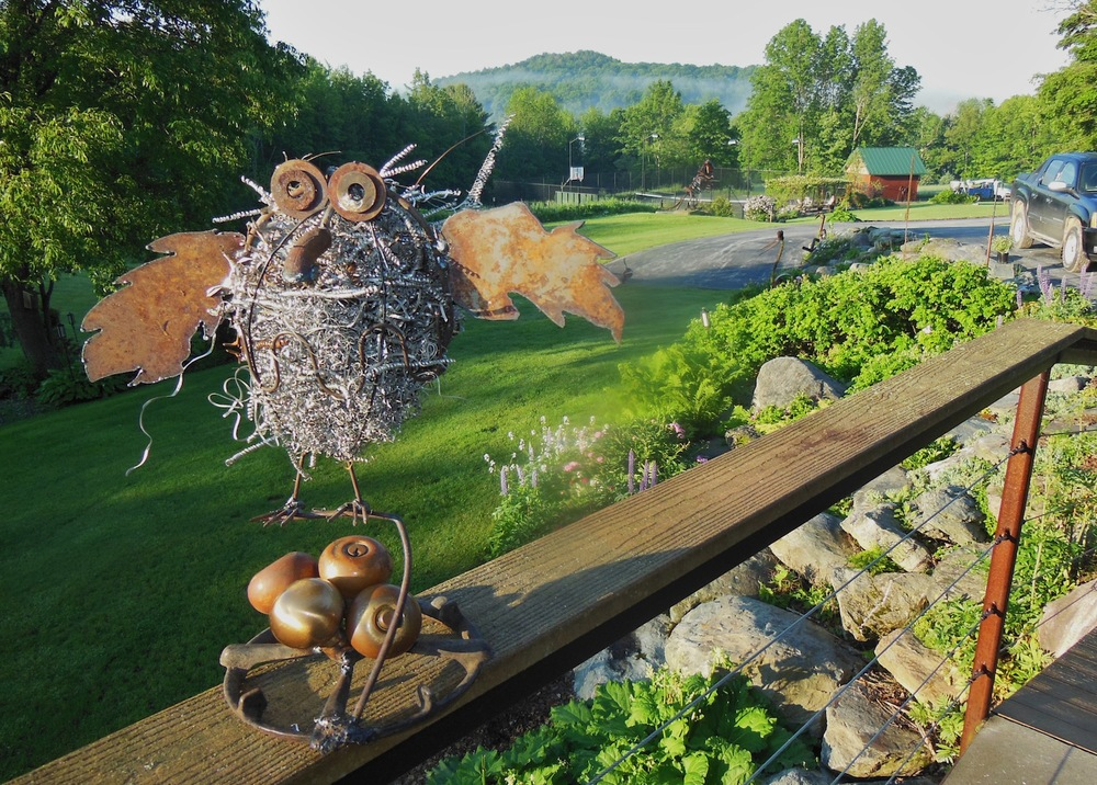 JUNE 2013:  Owl on Doorknob Nest