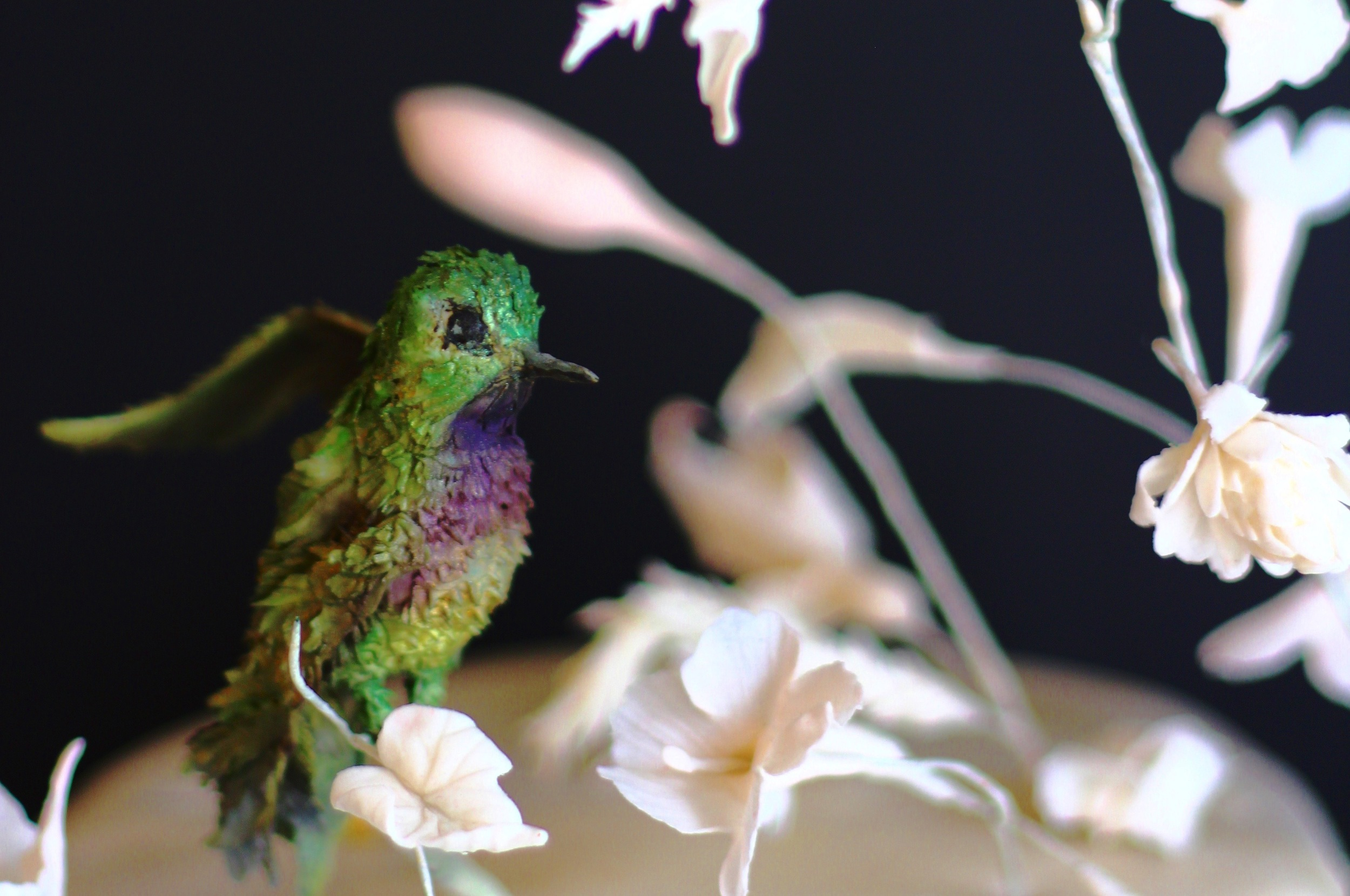 sugar humming bird by jaime gerard cake