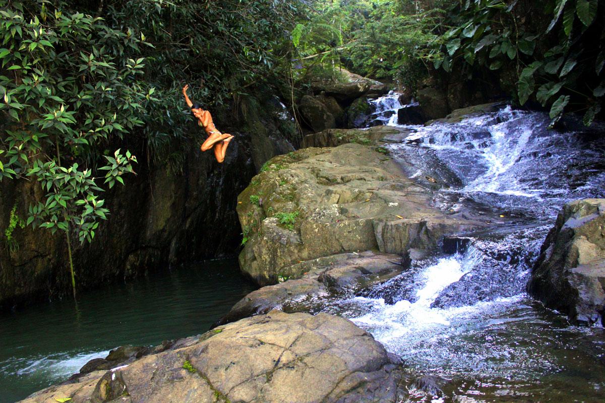 Rainforest Inn's private jungle pool.