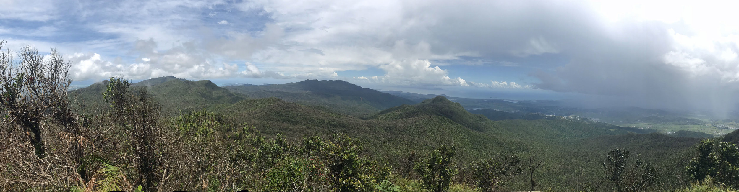 This is a panorama from the peak. You can see the Atlantic and the Caribbean sea!
