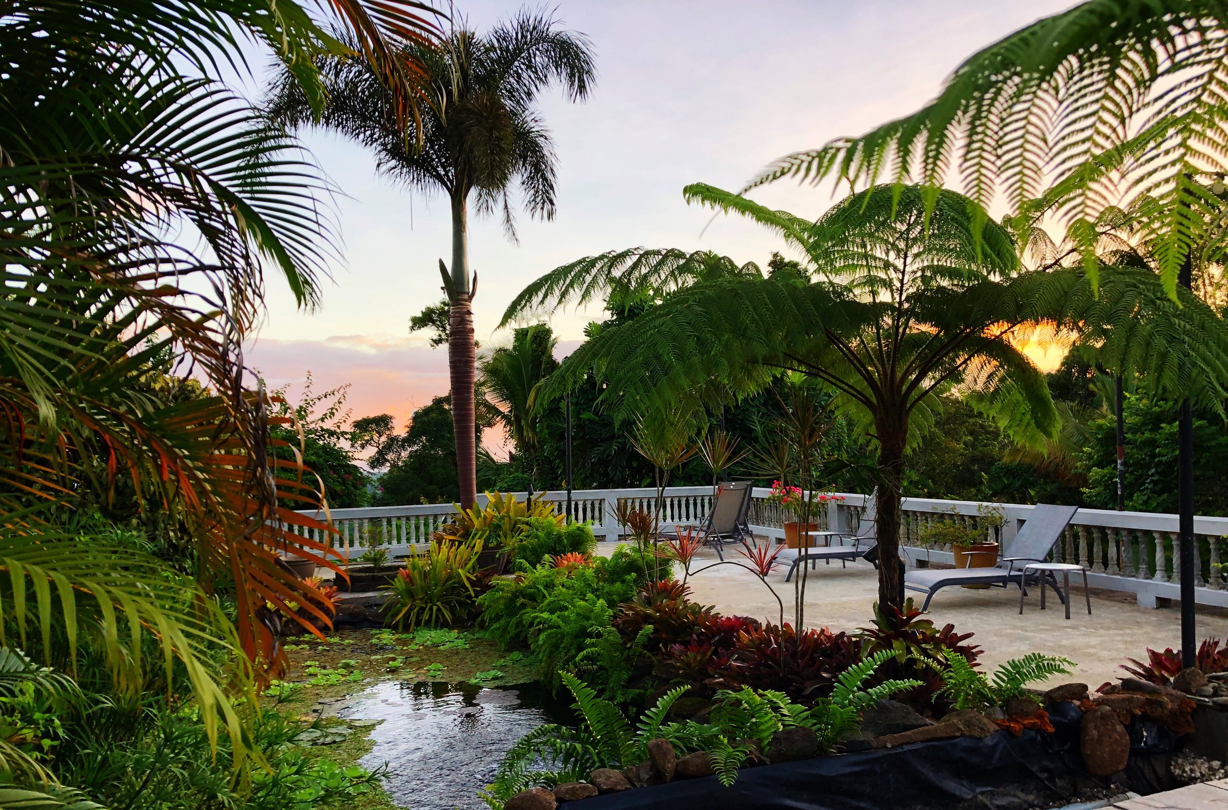 Relax by our koi pond and enjoy the sunrise.
