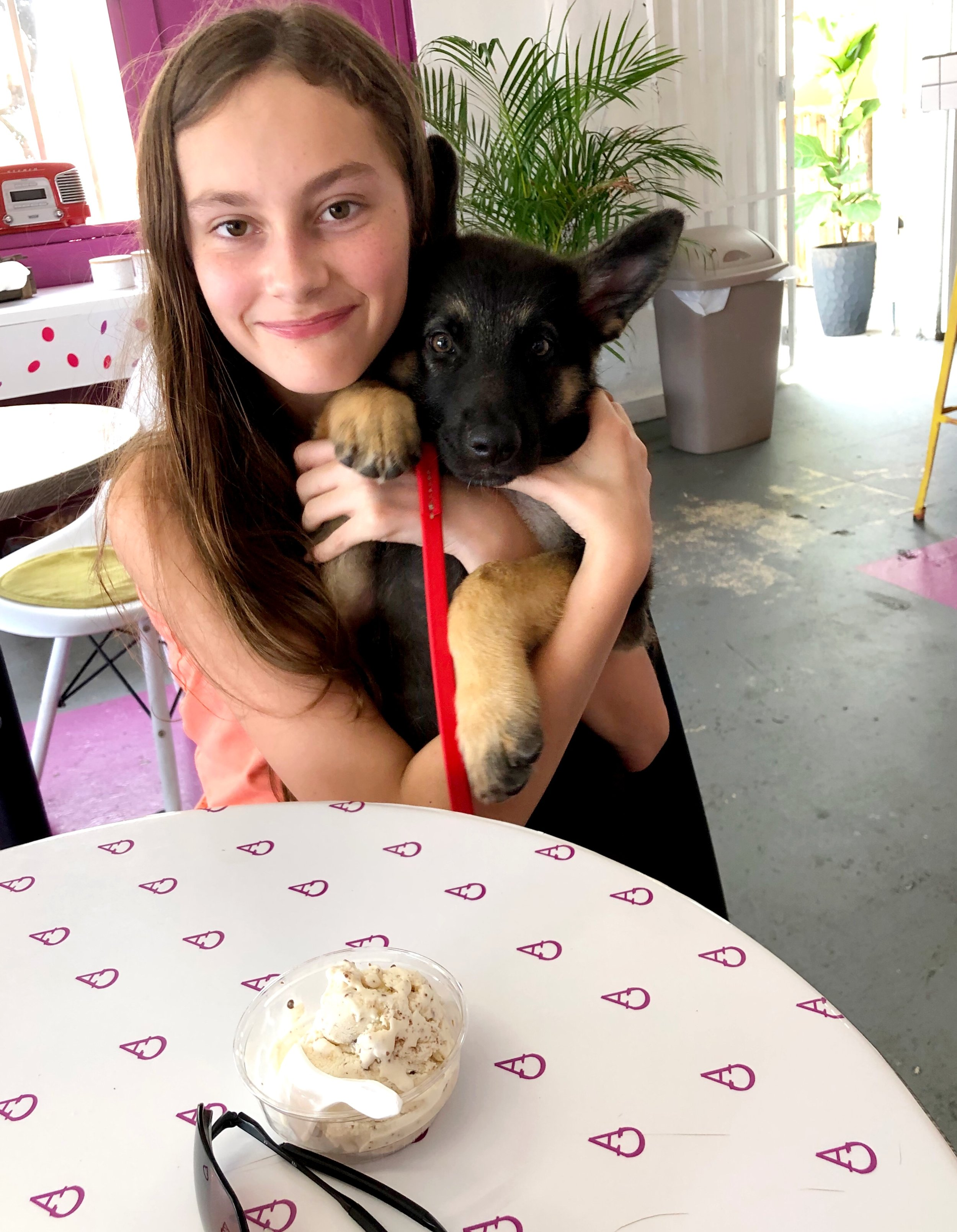 Bill and Renée's grandaughter enjoying some artisanal ice cream at Peccas. Livy their new german shepherd puppy had a taste too!