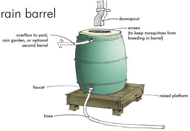 rain barrel drawing.jpg