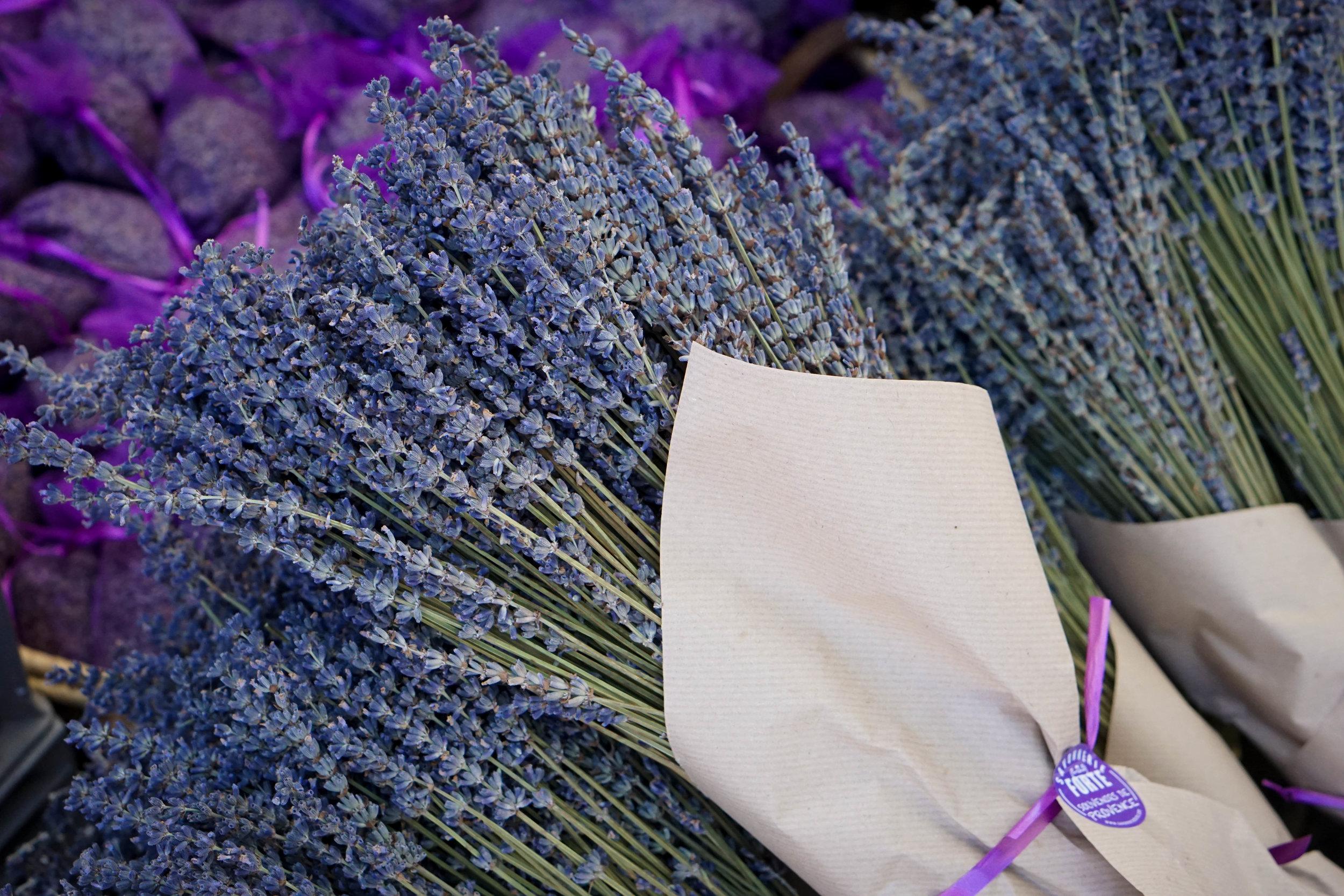 Lavender at the Apt Lavender Festival.