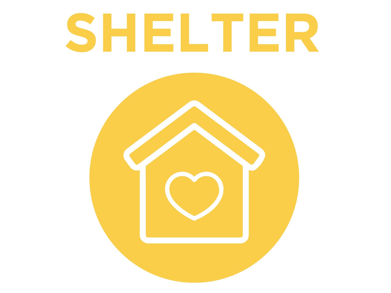 Shelterhealflourish-01.png