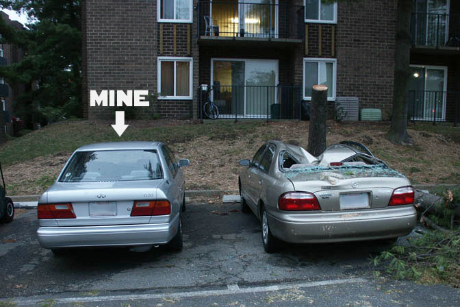 Car Crush.jpg
