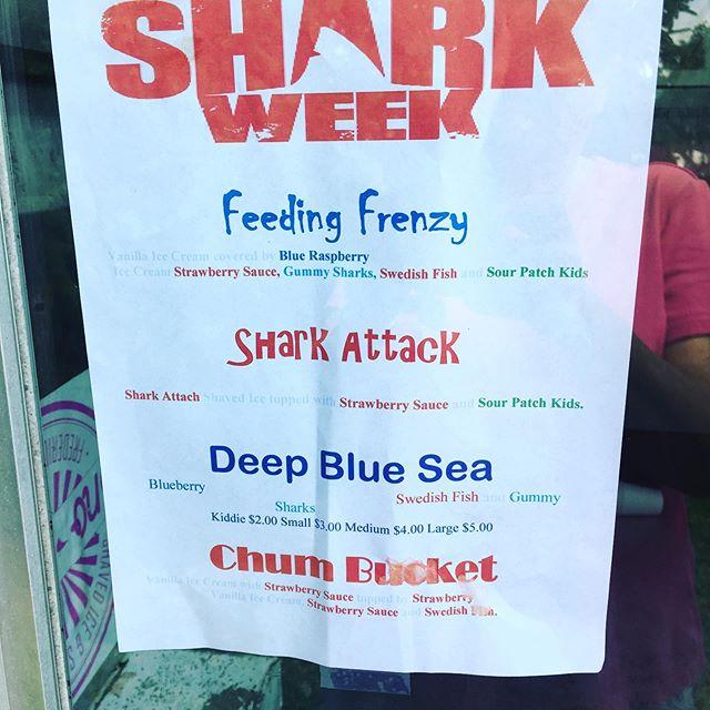 Only two chances for our #sharkweek2019 specials.  #feedingfrenzy #chumbucket #deepbluesea