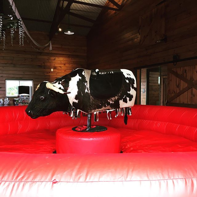 To celebrate our 5th straight #barnyardbash @greenmeadowsfarmmd we might just ride this #mechanicalbull  Here till 4pm.