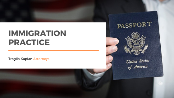Introducing Immigration Practice.png