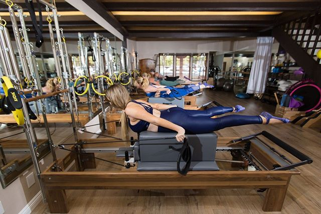 We think everyone should incorporate #pilates into their routine. There are so many benefits from increased strength and flexibility to enhanced stamina and mindfulness. Recruit your friends to come practice with you and get $15 off of your next purchase. Tap the link in our bio to refer today!⠀ .⠀ .⠀ .⠀ .⠀ .⠀ .⠀ #pilates #pilatesonpurpose #exercise #fitness #workout #health #wellness #mindfulness #newportbeach #costamesa #orangecounty