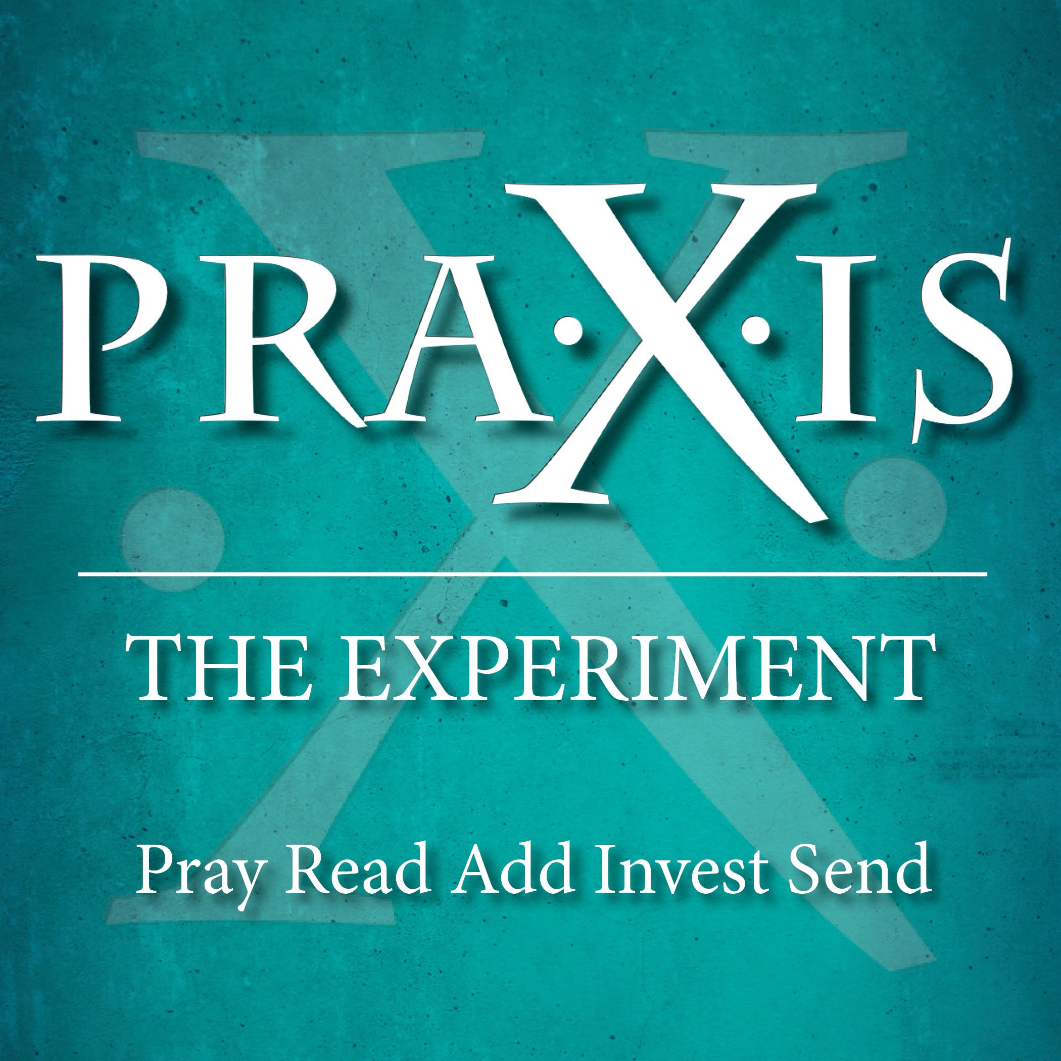PRAXIS Bulletin Cover Image.jpg