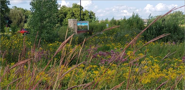 FUMC Prairie Trail Walk near Pine Cone Road
