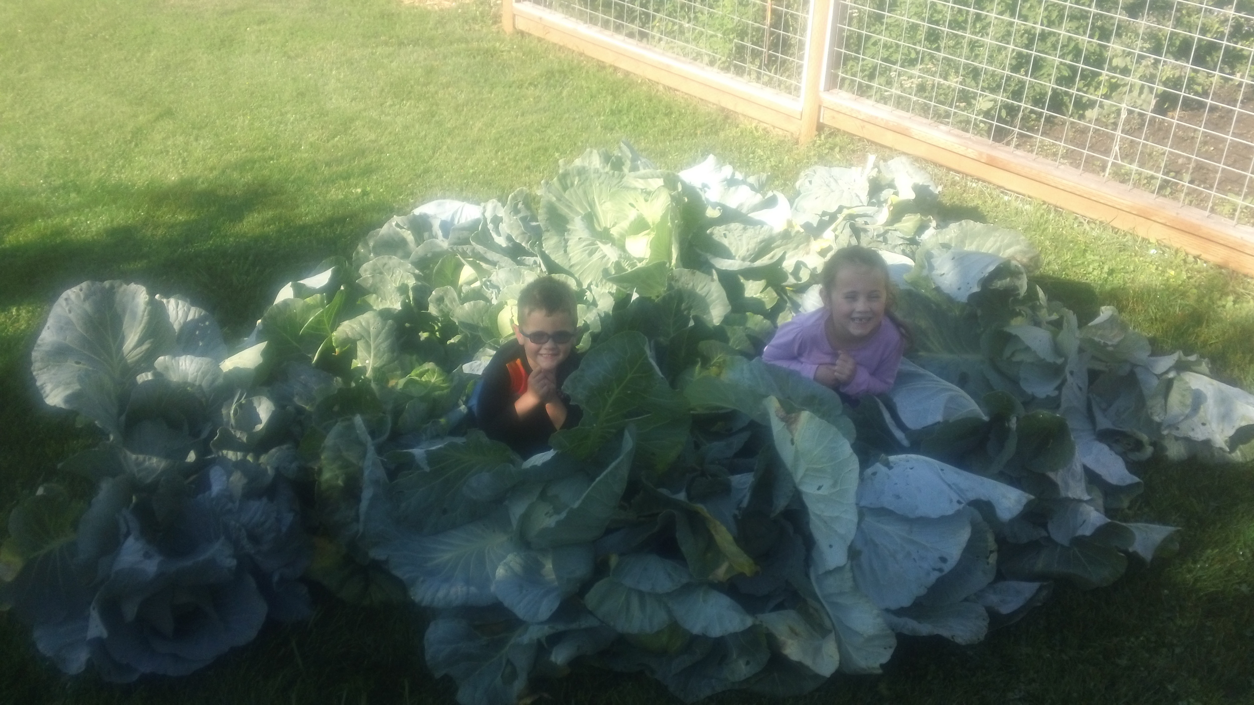 My Cabbage Patch Kids