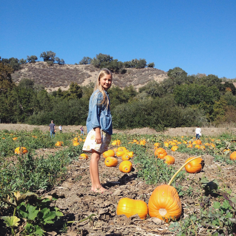 FallPumpkinPatch
