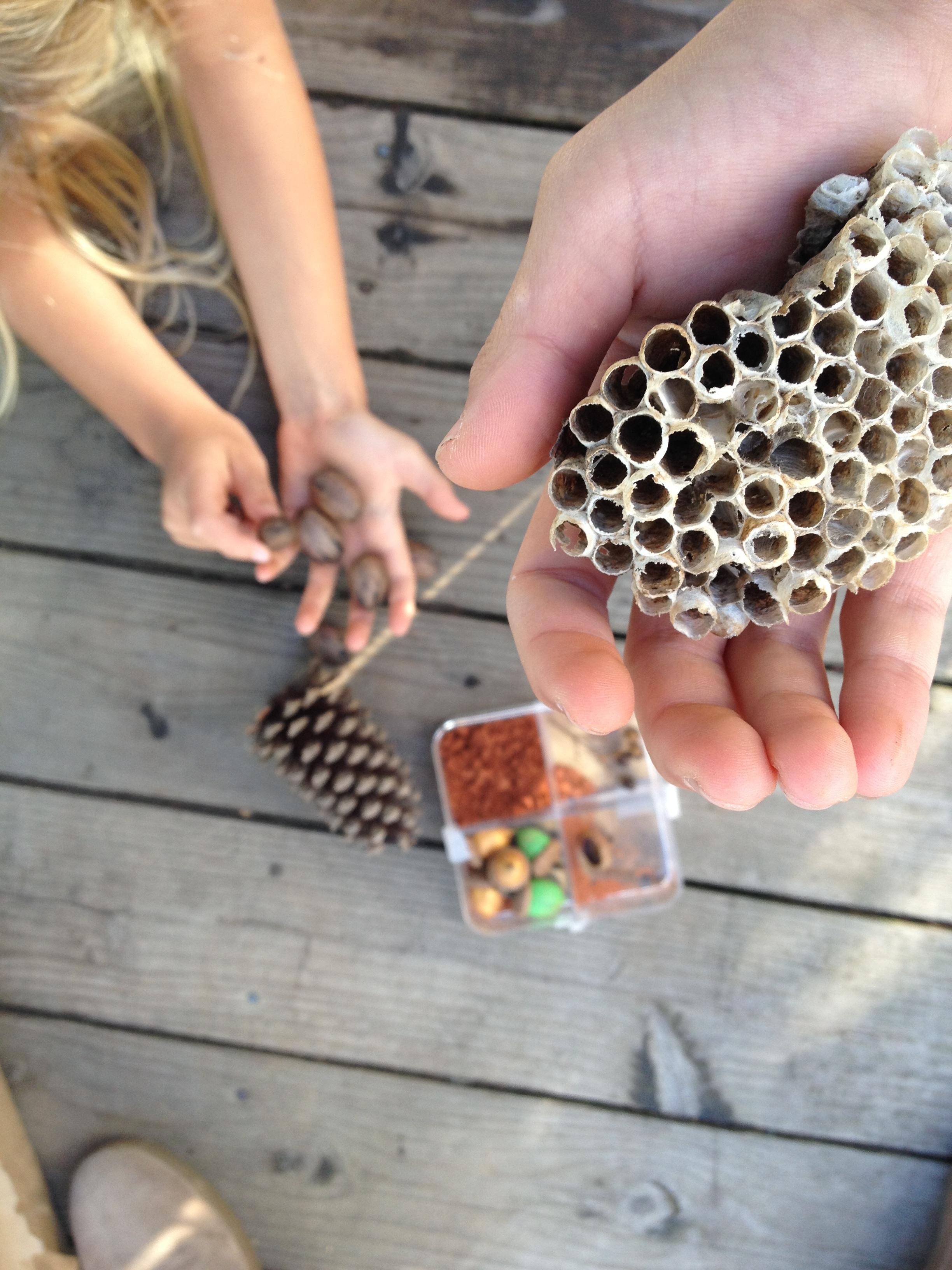 nature pal exchange treasures