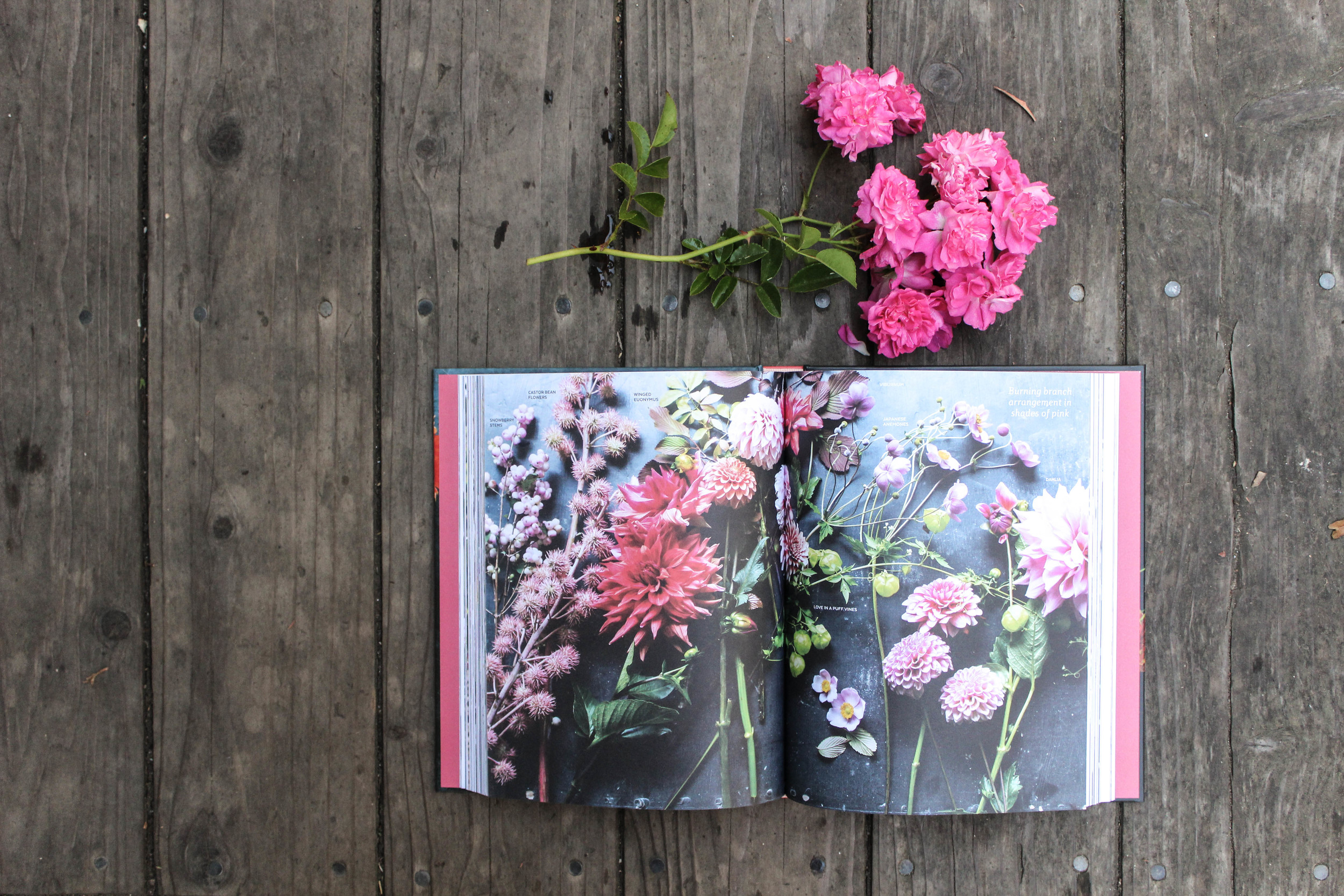 the flower workbook