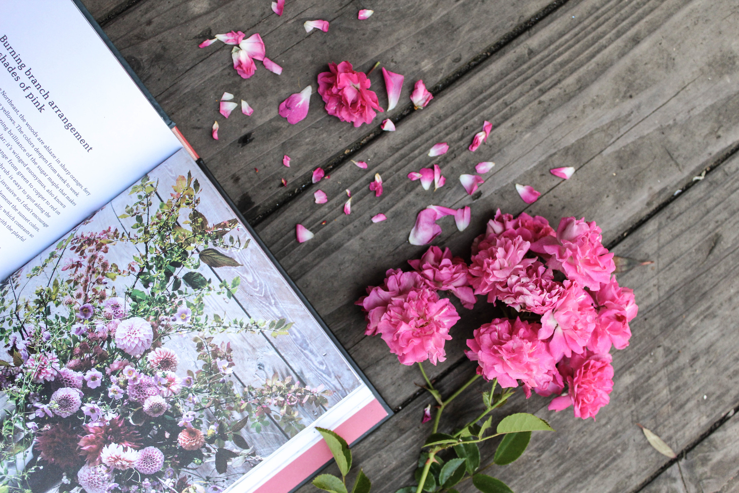 book review the flower workbook
