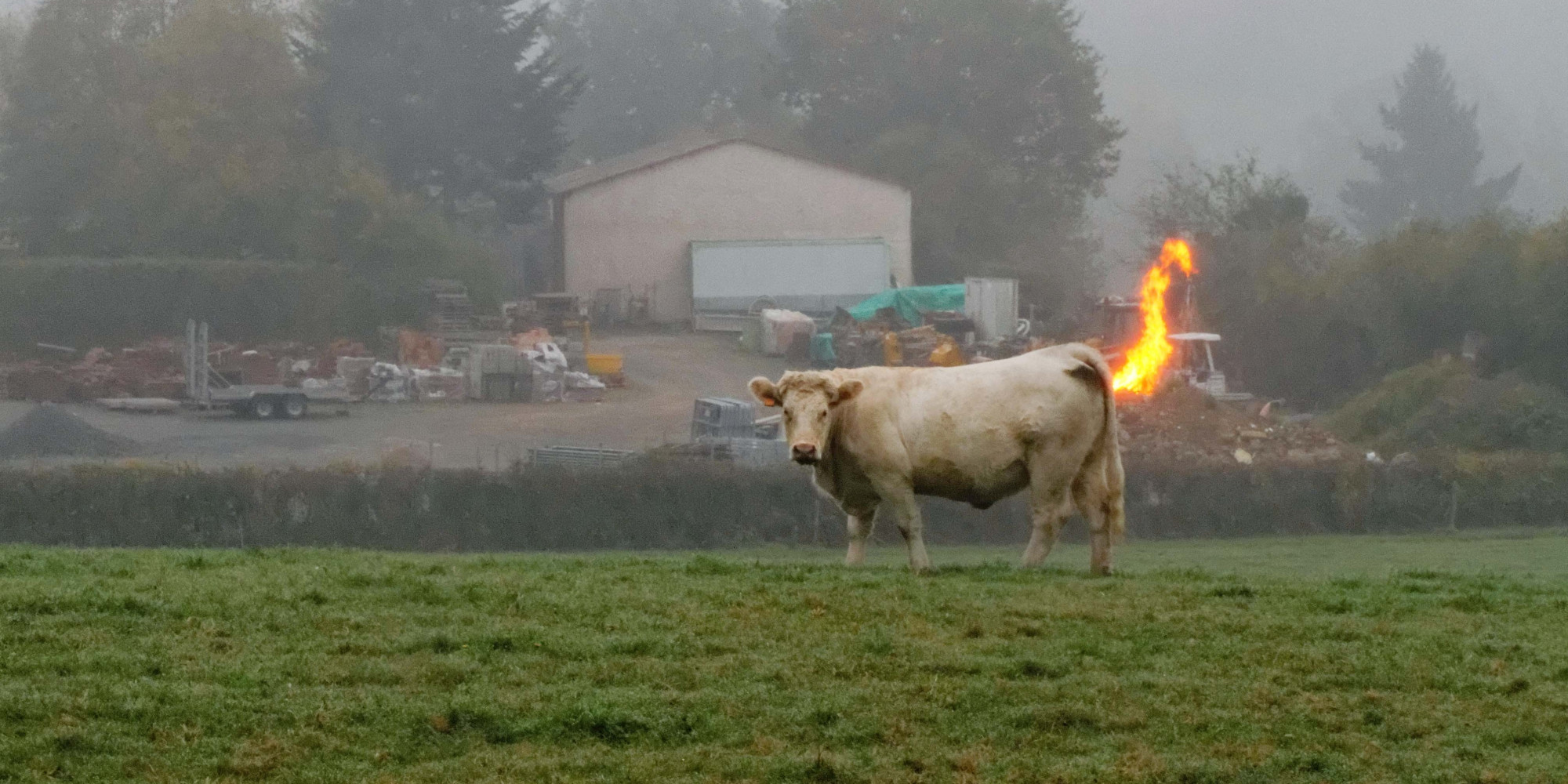 http://www.huffingtonpost.co.uk/2014/01/28/farting-cows-methane-gas-explosion-german-dairy-farm_n_4678584.html