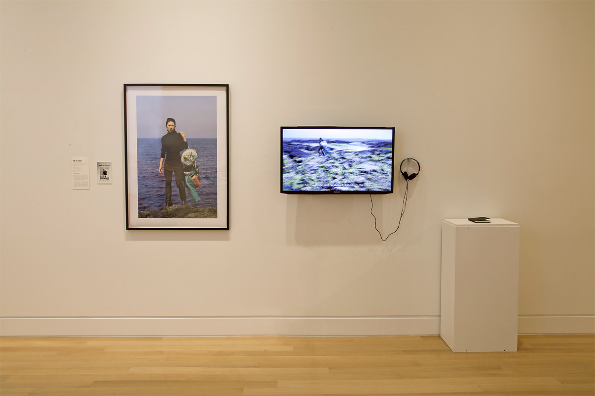 Installation view:  War Baby / Love Child,  DePaul Art Museum, Chicago, 2013