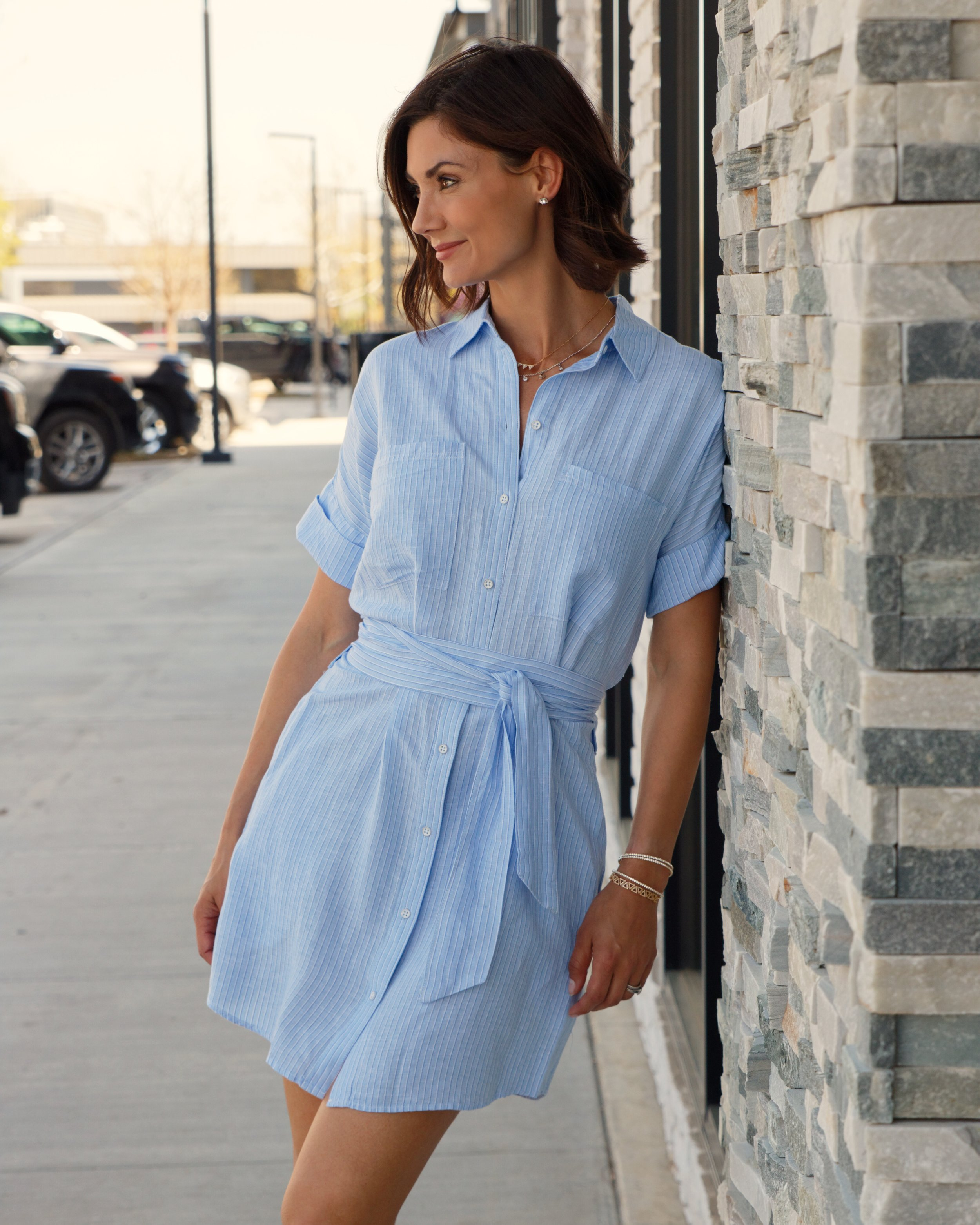 DL_BlueShirtDress_1.jpg
