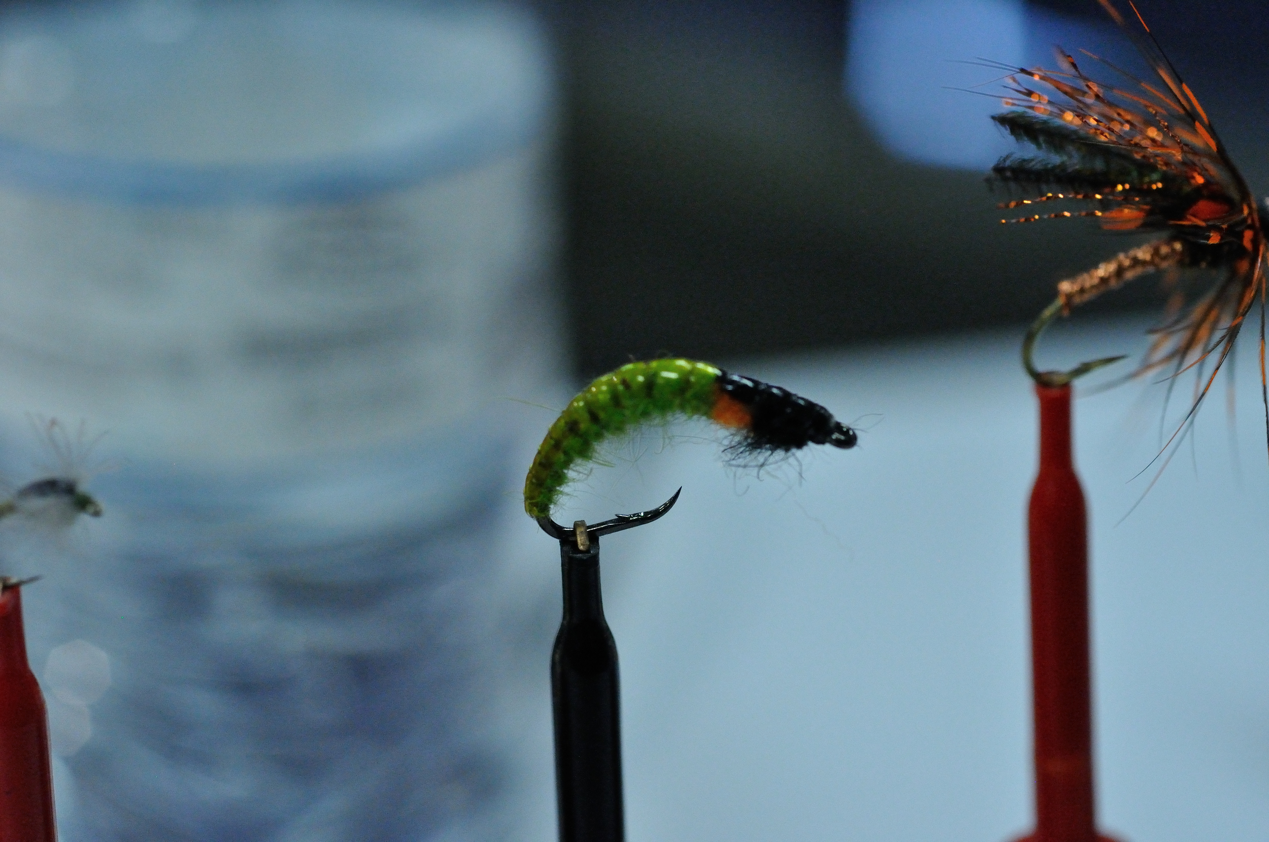 Green Rock Worm