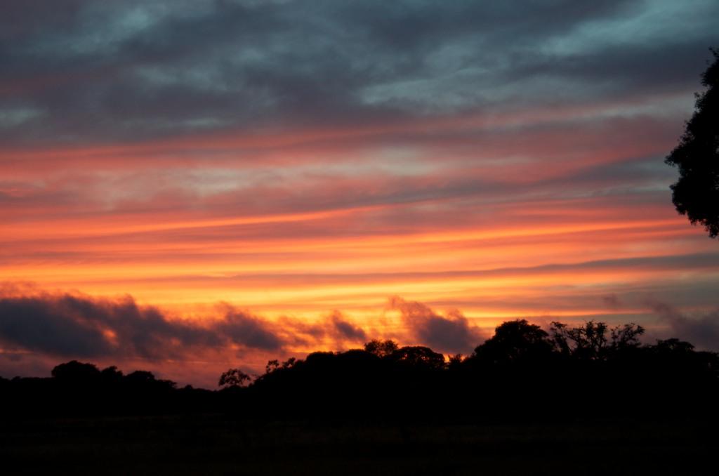 Sunrise, Pantanal, Brazil, 22 Apr 2012