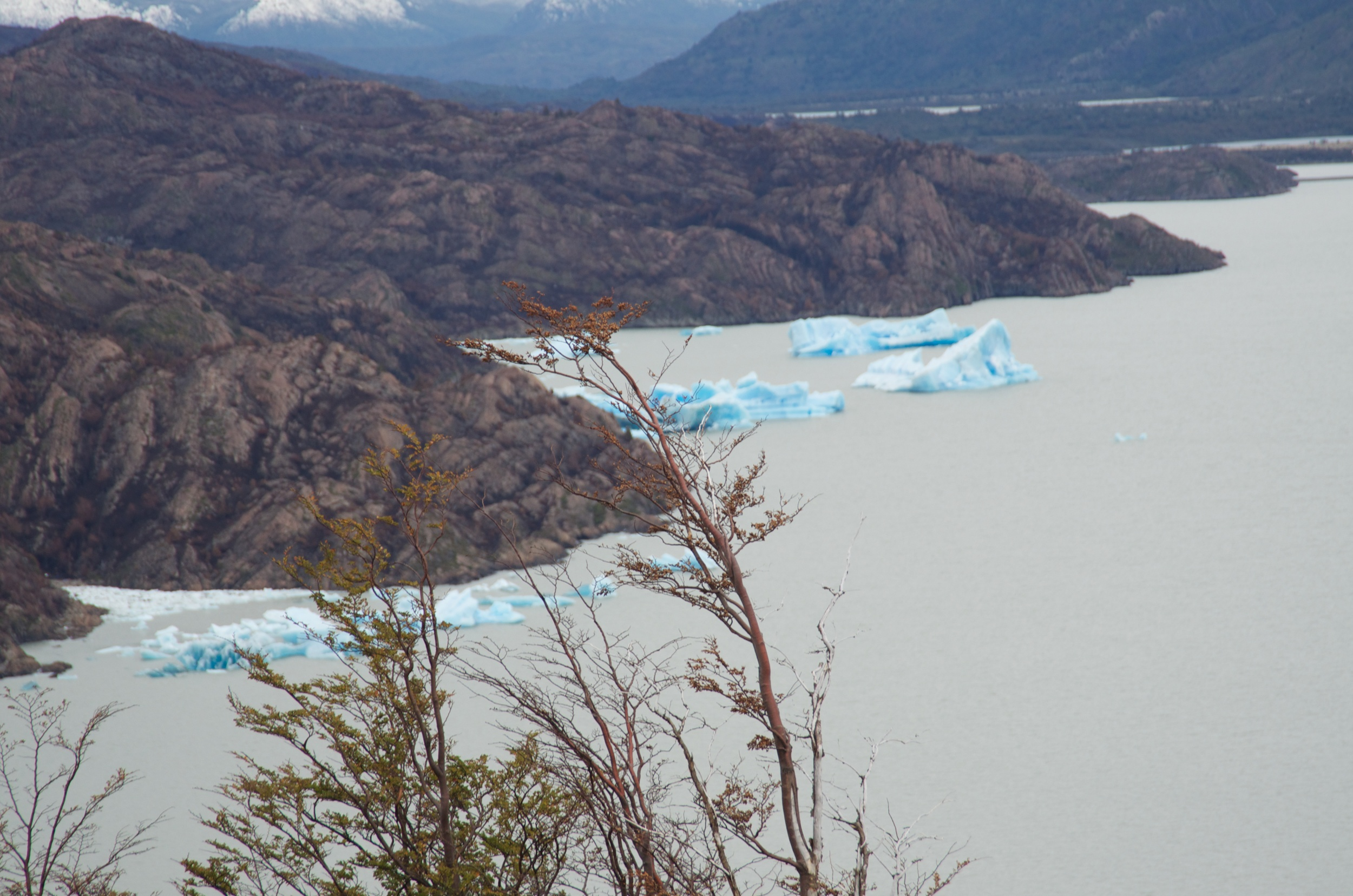 Icebergs on Lago Grey, Torres del Paine, Patagonia, Chile, 6 Apr 2012