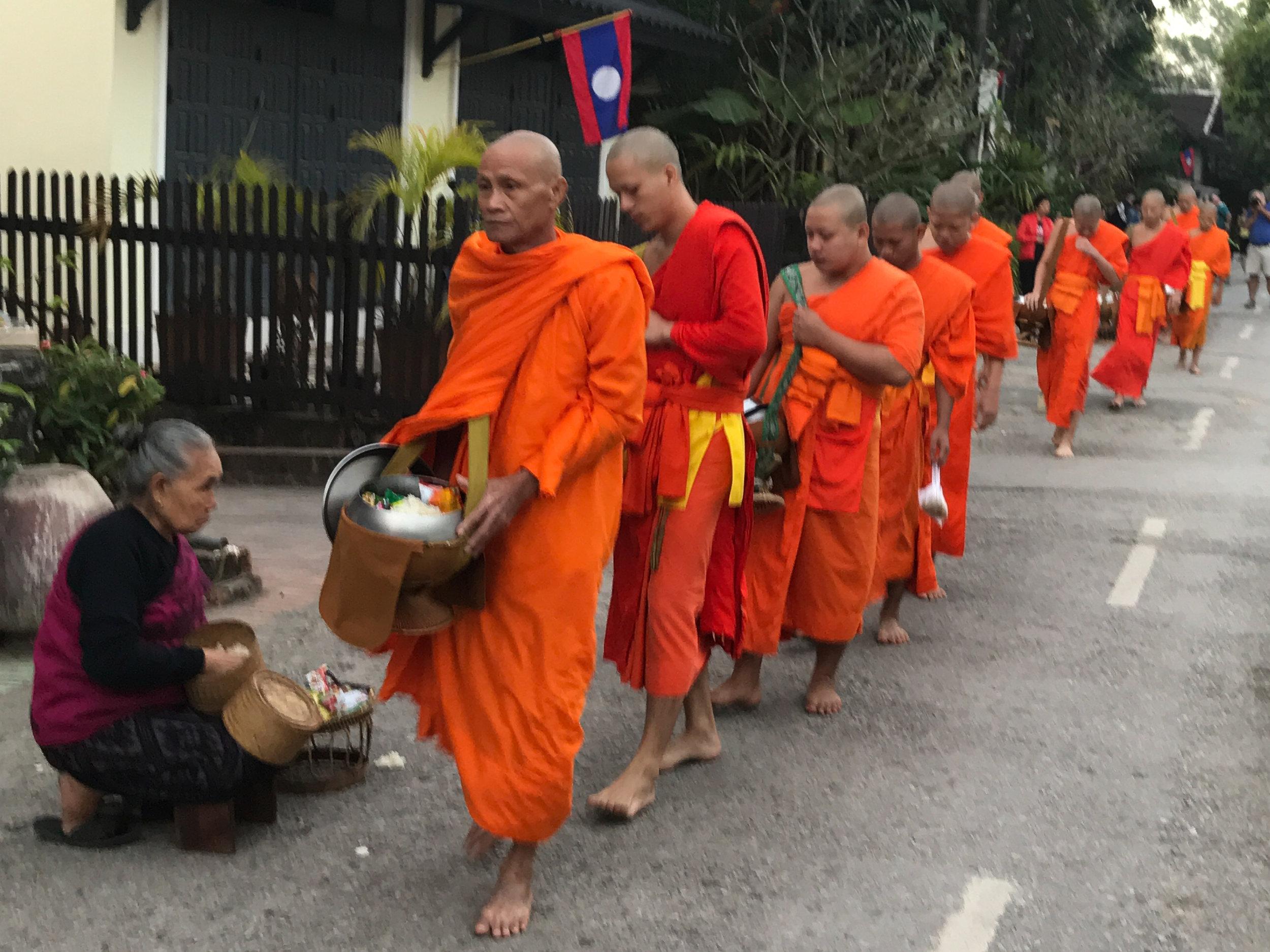 Monks sunrise almsgiving procession, Luang Prabang, Laos