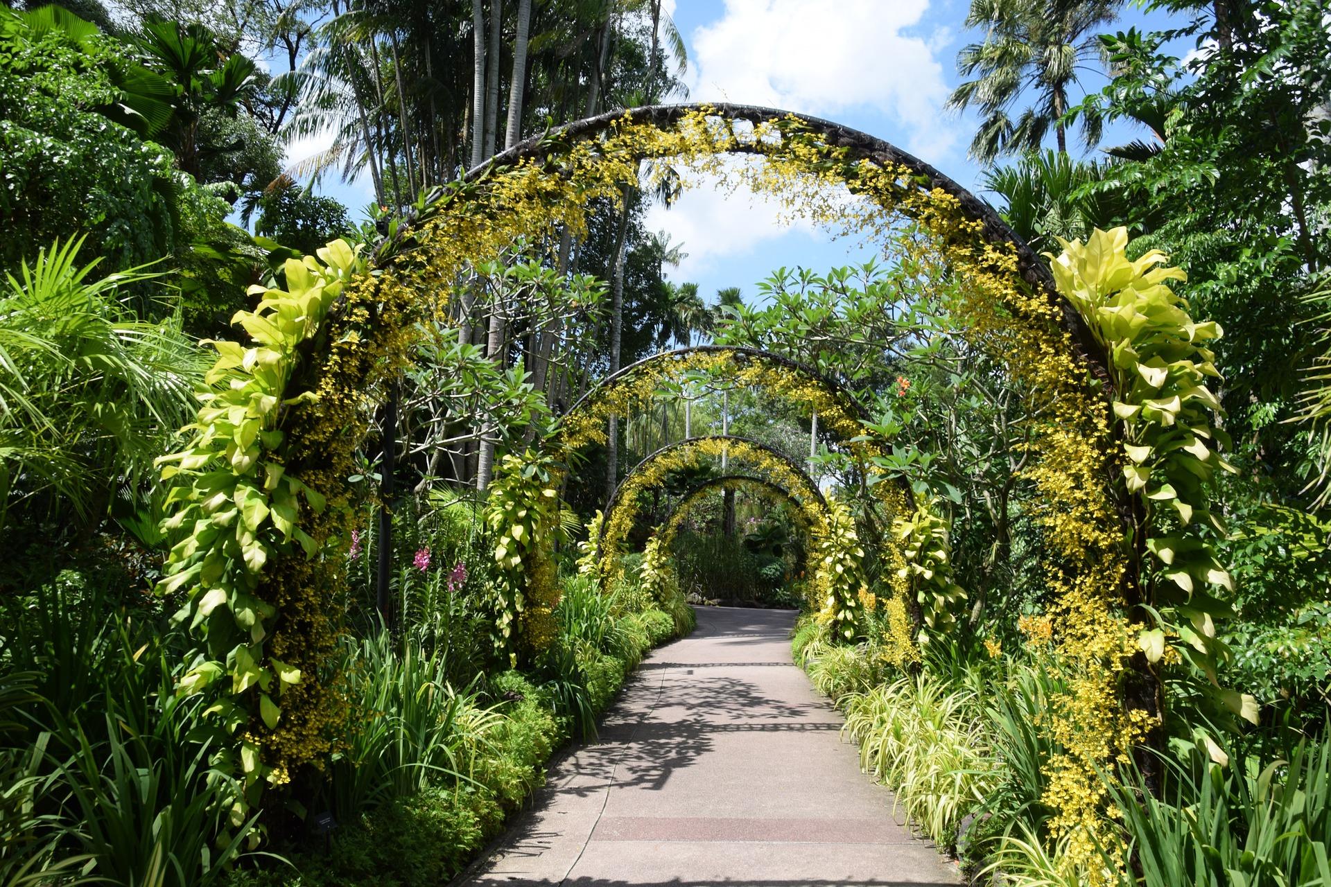 singapore-1132081_1920.jpg