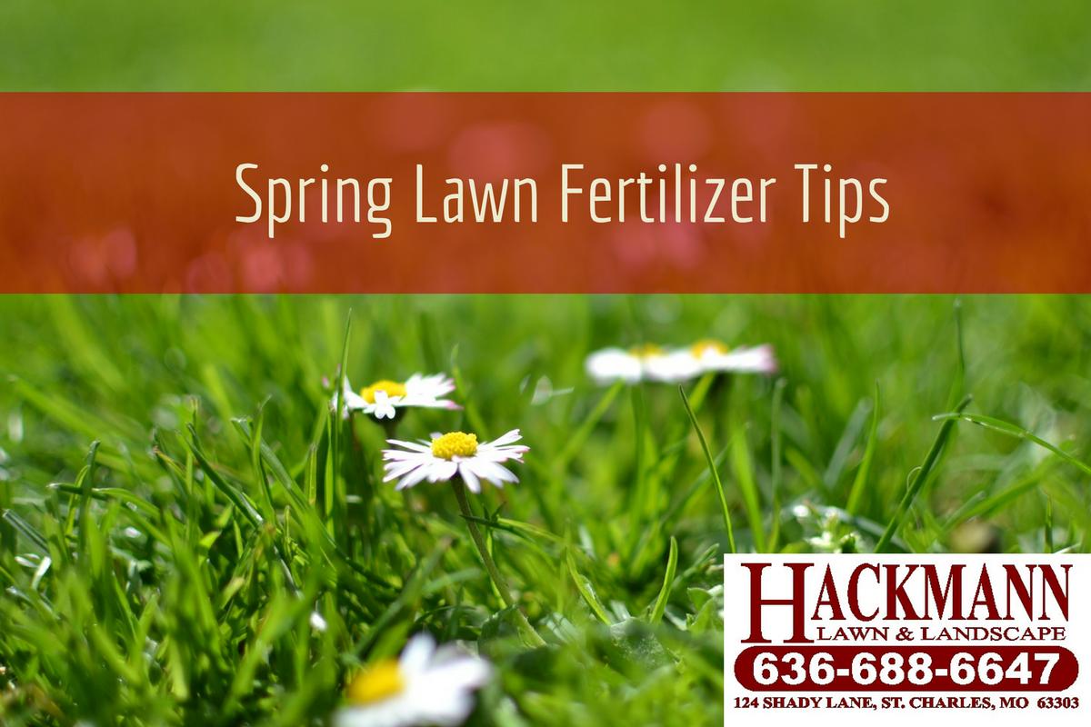 spring lawn fertilizer