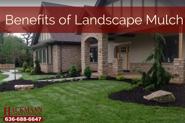 Benefits of Landscape Mulch.png
