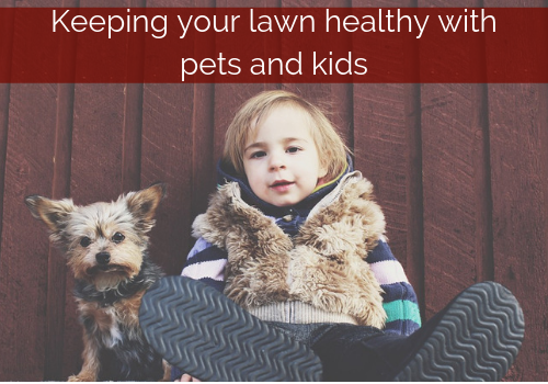 keeping lawn healthy pets and kids.png